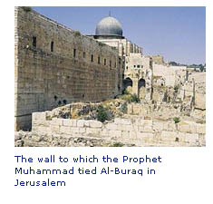 Website reading islam story isra kotel