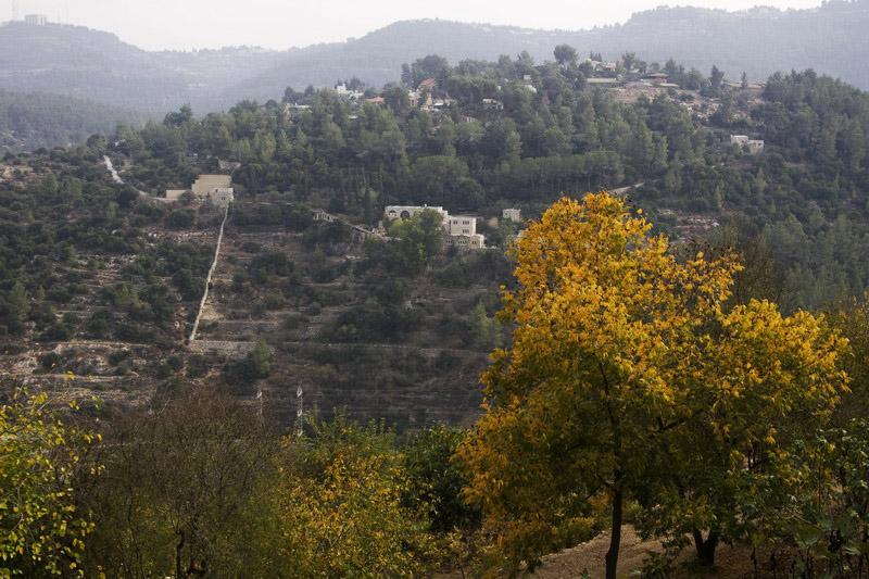 Jerusalem terrace