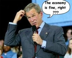 George-bush-says-economy-is-fine