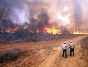Texas-battling-wildfires-rage-by-heat