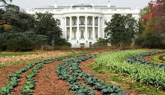 Obamagarden-1