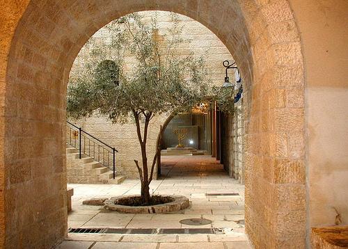Cardo jerusalem