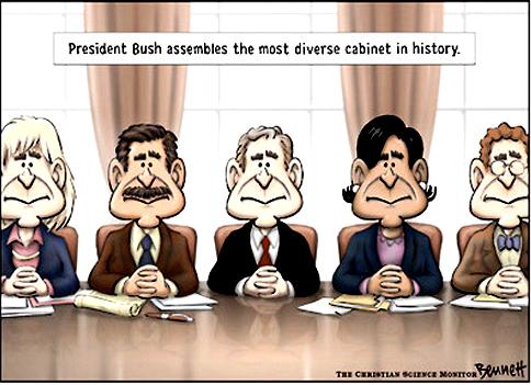 Cabinet diversity