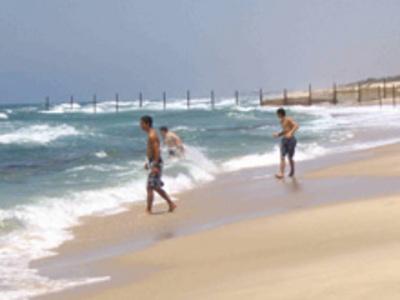 Gush_katif_palm_beach